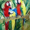 Three's a Crowd-Parrots-Oil