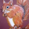 Stop for lunch-Squirrel-Oil Pastel