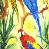 Rainforest- Gossip-Acrylic-19x42 inches