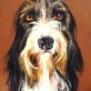 Barney|Pastel|15x18inches