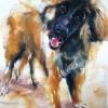 Ralph|Watercolour|15x18inches