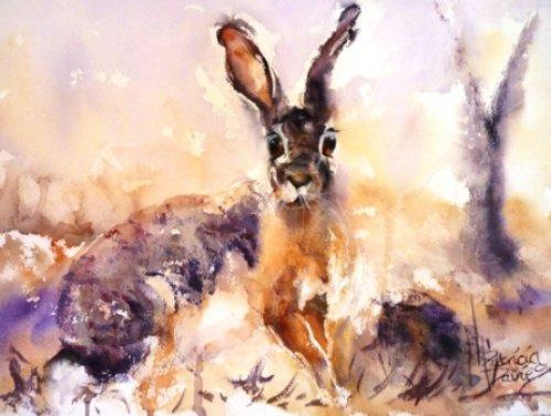 Hare|Watercolour|15x18inches
