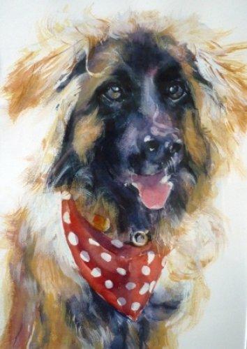 Ralph 11|Watercolour|15x18inches