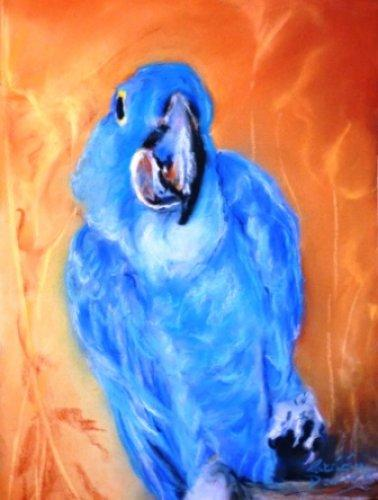Parrot4|Pastel|15x18inches