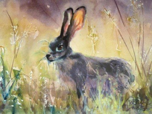 Purple Hare|Watercolour|22x16